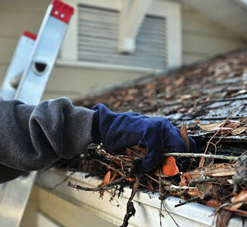 conte gutter cleaning