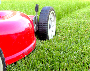 lawn mowing service rochester ny